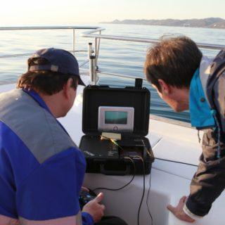 состав программы ведения регулярных наблюдений за водным объектом